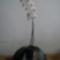 lepkeorchidea 8