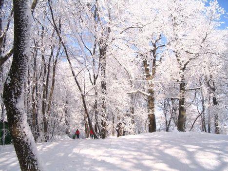 Téli  tájképek 1