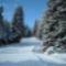 Téli  tájképek 3
