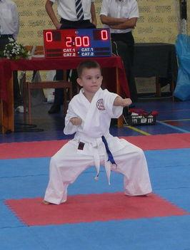 A Karatebajnok