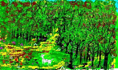 Ezek a képek  a számítógép Paintjával készültek 14