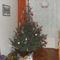 2010. karácsony