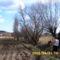 A Füzes patak partján a Biofarm friss szántása. (Fűzfa tönköket ások ki.)
