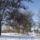 Tél van,milyen szép!