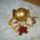 Karacsony_2010-004_989635_93854_t
