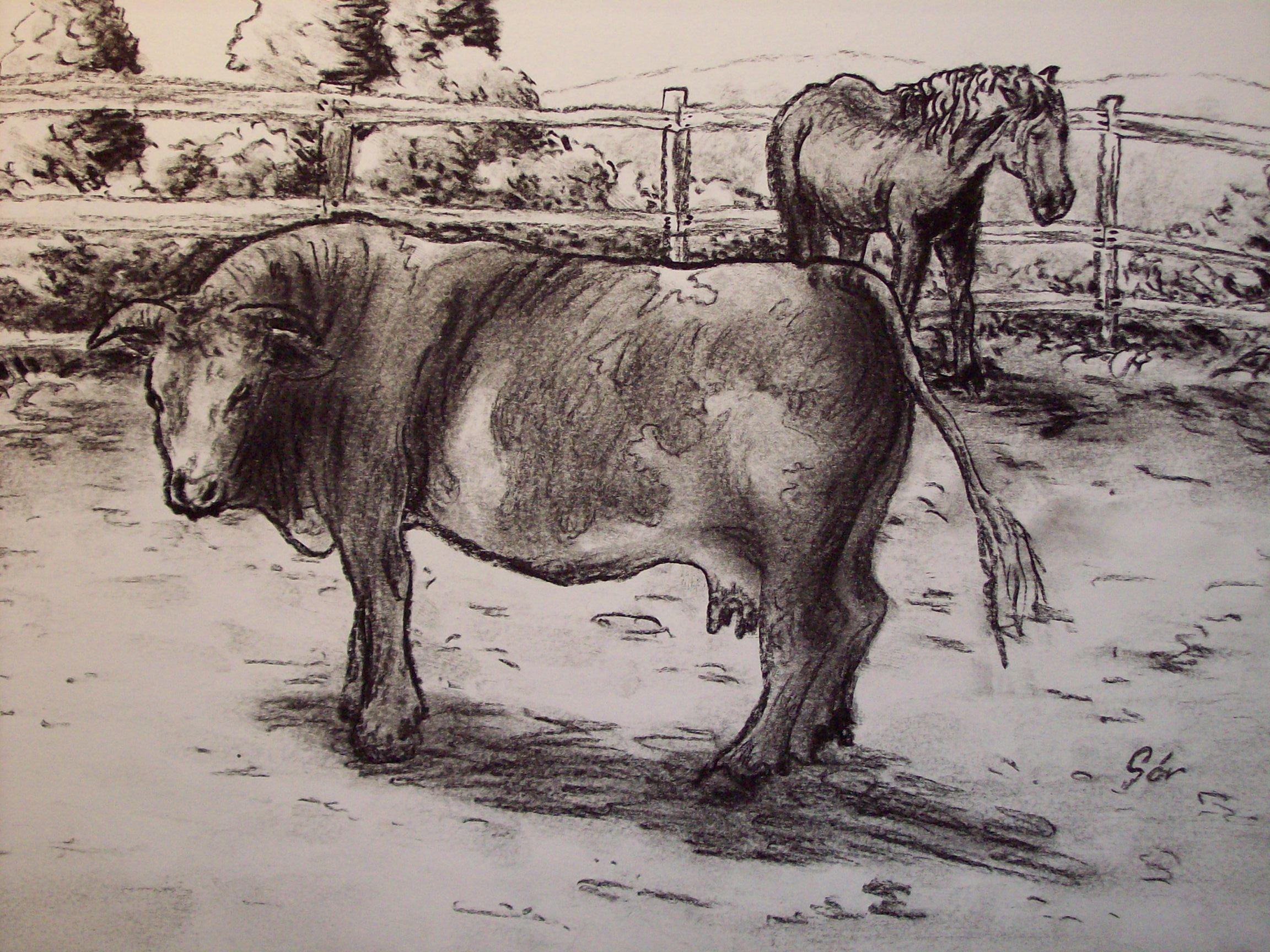 Tehén, Lóval (kép