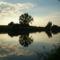 majsi horgász tó  8