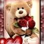 139847_27506_card