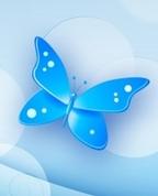 1555685_3137_profile