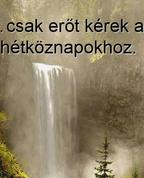 1095264_1315_profile