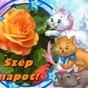 608434_15951_card
